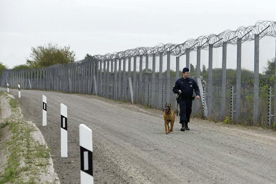 Колючий дріт і паркан на кордоні Угорщини