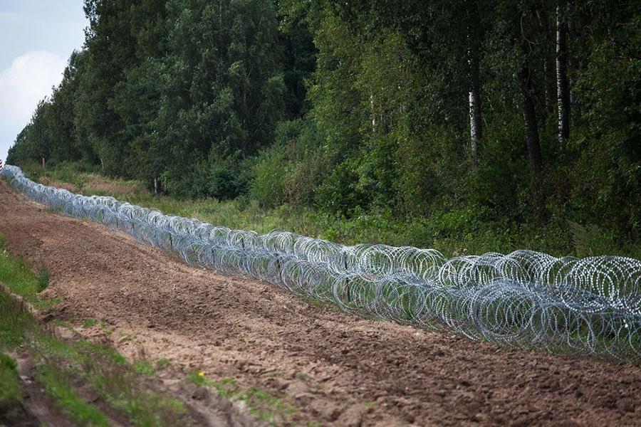 Колючая проволока Егоза на границе Польши с Беларусью