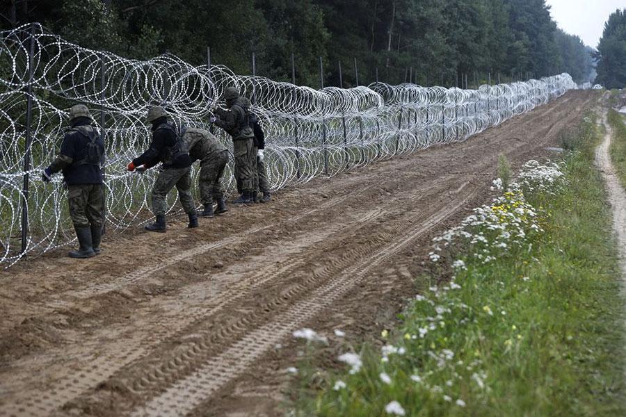 Колючая проволока на границе Польши и Беларуси