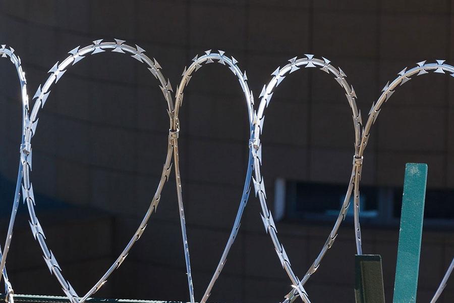 Установлено 40 км колючей проволоки на границе с Беларусью