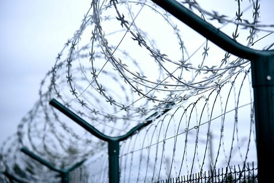 Временный забор на латвийско-белорусской границе